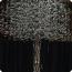 Ghaf_Tree_TN_3
